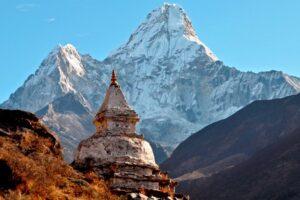 Йога Тур Гималаи