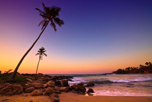 Йога-тур на Шри Ланку