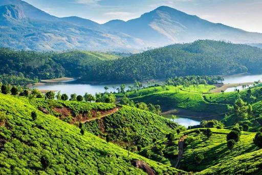 Йога-тур в Индию на НГ
