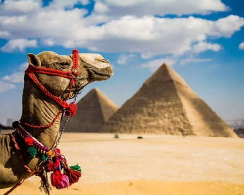 yoga tour in egypt