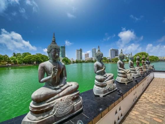 Йога-тур ВДОХновение на Шри Ланке